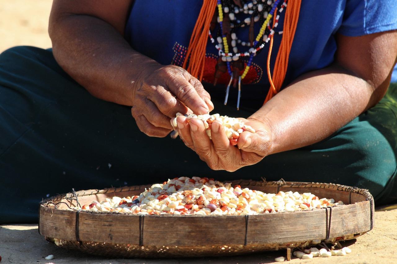 Seminário | Questão Indígena na Baixada Fluminense