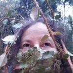 Foto do perfil de Rosana Ilabaca