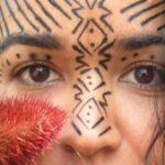 Foto do perfil de Alana Mendes